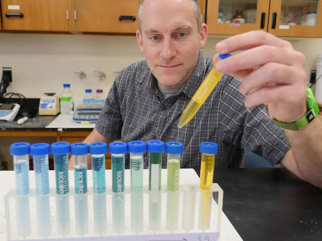 scientist looks at tubes of colored fluid