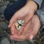 hands holding small pieces of marine debris