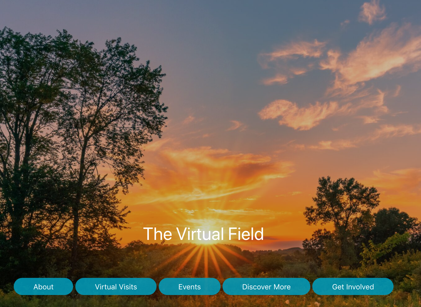 The Virtual Field portal homepage
