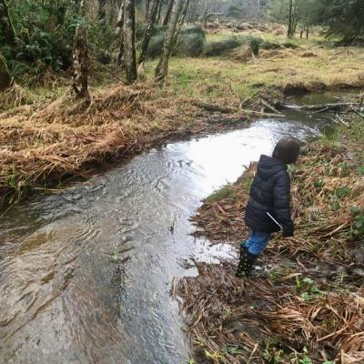 Student explores a wetland area near her school