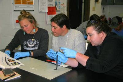Oregon Marine Scientists and Educators examine lamprey