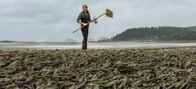 Research Fiona Nash on eelgrass bed off the Oregon coast.