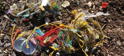 Collections of marine debris items found on a beach